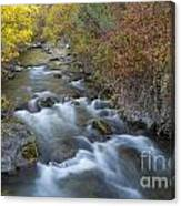 Palisades Autumn Canvas Print