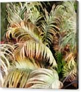 Palm Bank Canvas Print