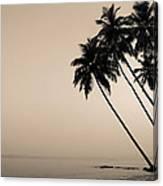 Palm Dreams Canvas Print