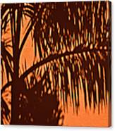 Palm Frond Abstract Canvas Print