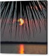 Palm Set Canvas Print