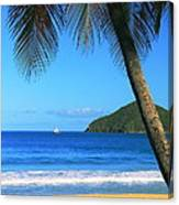 Palm Shaded Island Beach  Canvas Print