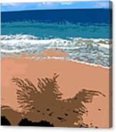 Palm Shadow On The Beach Canvas Print