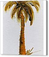 South Carolina Palm Tree Canvas Print