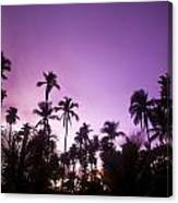 Palm Trees At Dusk, Malaysia, Southeast Canvas Print