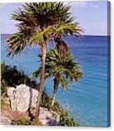 Palm Trees At Tulum Canvas Print
