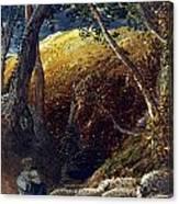 Palmer: Apple Tree Canvas Print