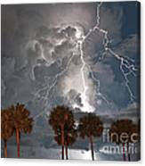 Palms And Lightning  Canvas Print