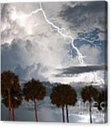 Palms And Lightning 3 Canvas Print