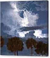 Palms And Lightning 4 Canvas Print