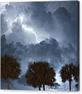 Palms And Lightning 5 Canvas Print