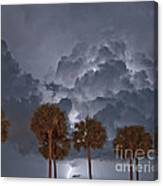 Palms And Lightning 7 Canvas Print