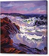 Palos Verdes Beach Canvas Print
