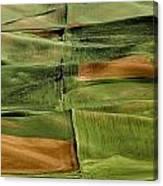 Palouse Fields, Whitman County Canvas Print