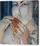 Pan 2 Canvas Print
