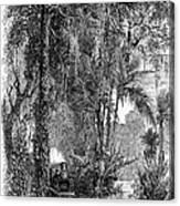Panama Railway, 1875 Canvas Print