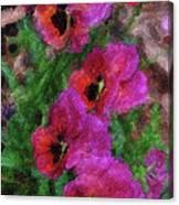 Pansies Painting Canvas Print