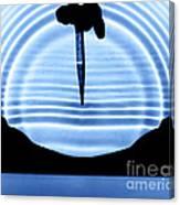 Parabolic Reflection Canvas Print