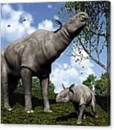 Paraceratherium, Artwork Canvas Print