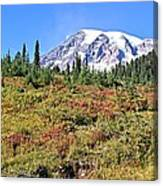 Paradise In Fall On Mt. Rainier 2 Canvas Print