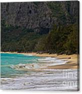 Paradise With A Ocean View Canvas Print