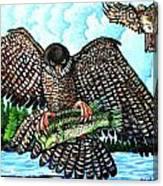 Paragon Falcon Canvas Print