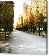 Parisian Park Walkway Canvas Print