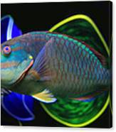 Parrot Fish With Glass Art Canvas Print