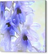 Passion For Flowers. Blue Dreams Canvas Print
