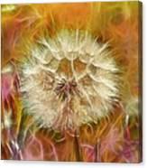 Pastel Dandelion Flare Canvas Print