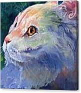 Pastel Persian Canvas Print