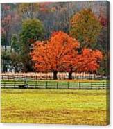 Pastoral Autumn Canvas Print
