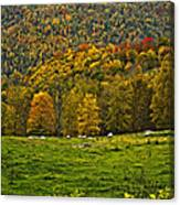 Pastoral Painted Canvas Print