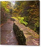 Path Through The Gorge Canvas Print