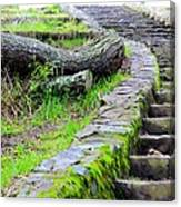 Paths Unlimited Canvas Print