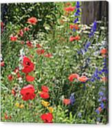 Patriotic Flowers Canvas Print