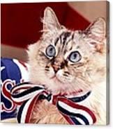 Patriotic Puddy Cat Canvas Print