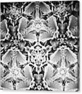 Patterns Of Black And White Canvas Print