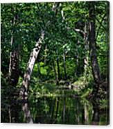 Peaceful Creek Canvas Print