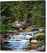 Peaceful Mountain River Canvas Print