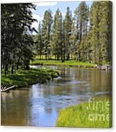 Peaceful Mountain Stream Canvas Print