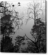 Peaceful Shades Of Gray Canvas Print