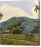 Peaceful Surroundings Canvas Print