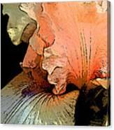 Peach Iris Digital Art Canvas Print