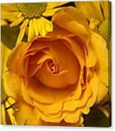 Peach Rose-yellow Daisies Canvas Print
