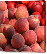 Peaches And Nectarines Canvas Print