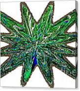 Peacock Burst Canvas Print