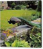 Peacock In Formal Garden, Kilmokea, Co Canvas Print