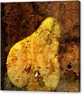 Pear In Stone Canvas Print