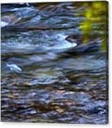 Pebbles Under Icicle Creek Washington State Canvas Print